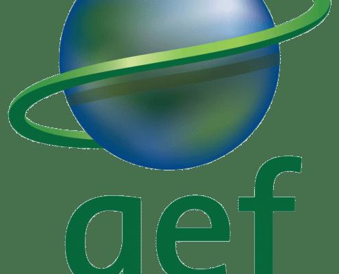 GEF logo short