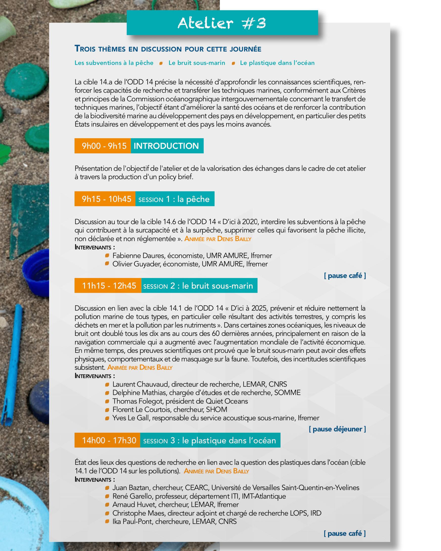 Programme détaillé atelier 29 mai 2019